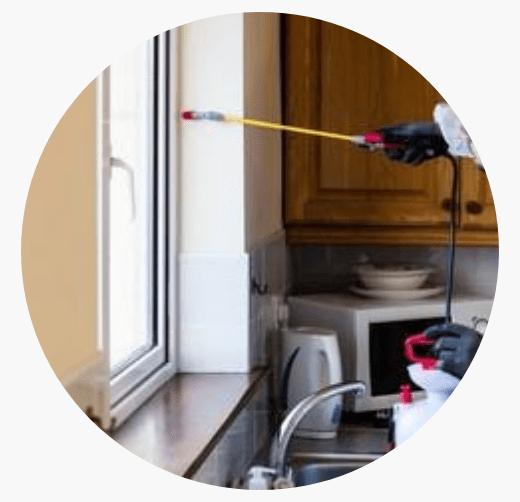 Pest Control Service Tarneit